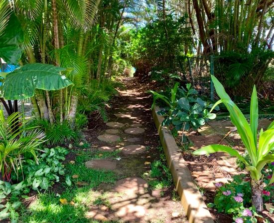 Exploring Maui